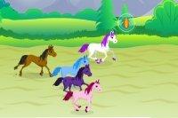 Jockey de poney